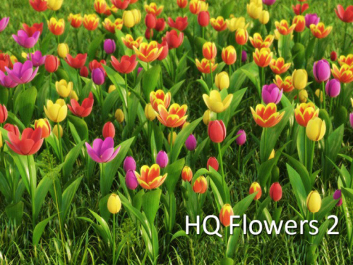 hdflowers_2_banner