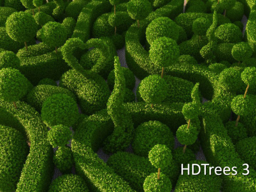 hdtrees_3